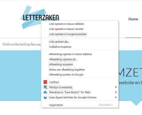 Controleer de elementen van je logo in je browser