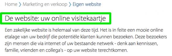 """Op een website voor startende ondernemers staat: """"De website: uw online visitekaartje""""."""