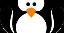 Google Penguin 3.0: word jij slachtoffer van de pinguin?