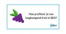 Hoe profiteer je van laaghangend fruit in SEO?