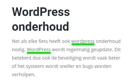 Ook goede spelling is belangrijk op je website